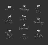 Animals mini floral graphic signs black - 228529245