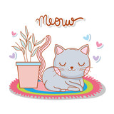 cute cat in the rug with plant and hearts