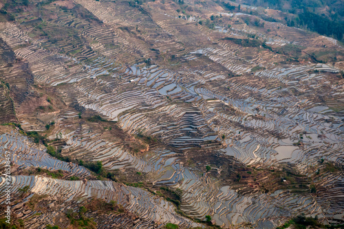 Large scale of rice terrace in Yuan Yang, China