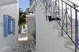 Ile Grecque, ruelle typique avec chat noir - 228564099