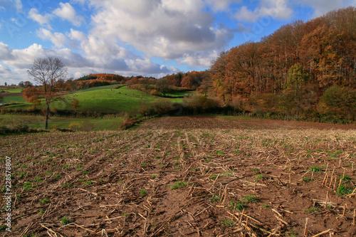 schöne Hügel Landschaft im Herbst