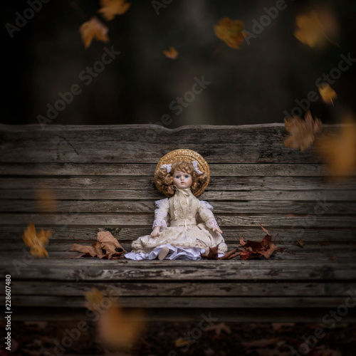 Doll on old rustic bench © marina