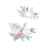 Watercolor botanical set. Hand drawn floral isolated illustration. Protea, fern and eucalyptus branch - 228652462