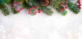Christmas background with frosted fir tree, copy space and decor - 228654470