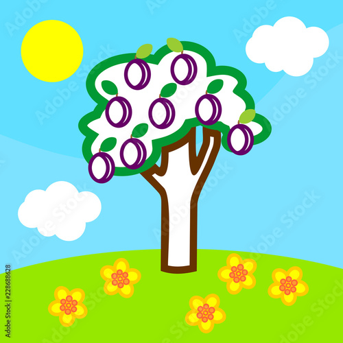 Coloring page. Cartoon summer landscape with plum tree with fruits, blue sky, white clouds and yellow sun