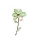 Einzelne Blume mit welkem Blüten Blatt