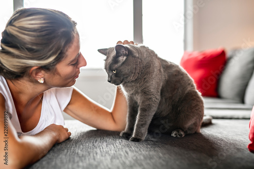 Nice Grey Cat with woman on sofa - 228699892