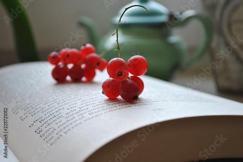 Relaks z książką - 228721082