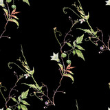 Watercolor painting of leaf and flowers, seamless pattern on dark background - 228786254