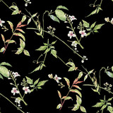 Watercolor painting of leaf and flowers, seamless pattern on dark background - 228786271