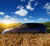 car on a field