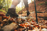 Close up of hiker legs with trekking poles in autumn forest