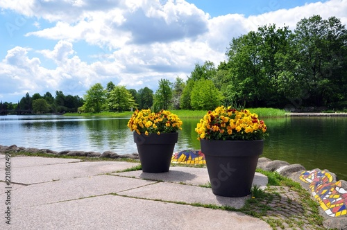 Foto Murales Blumen im Britzer Garten