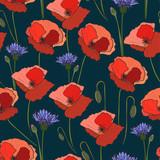 Seamless pattern poppy cornflower, vector