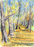 Landscape: alley in the autumn park, golden autumn, fallen leaves, a bench in the distance, watercolor sketch, illustration.