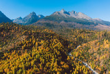 mountains on a sunny day with forest in colors of autumn