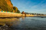 Dawlish Devon - 228953615