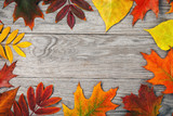 Frame of autumn leaves on wooden board with copy space, top view