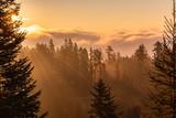 Beautiful autumn landscape - Herbstlandschaft - 228968825