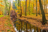 Wooden river in autumn forest - 228989491