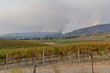 smoke from wildfires over hills and vineyards in Sonoma Valley, California
