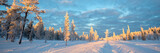 Snowy panoramic landscape, frozen trees in winter in Saariselka, Lapland, Finland - 228998031