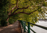 Autumn view of the Thames Path, somewhere in Fulham, London, UK.