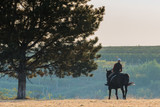 A beautiful woman rides a black horse on the hill, in autumn