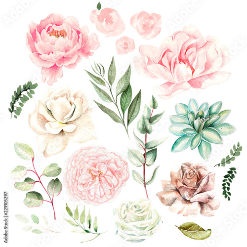 Leinwanddruck Bild Watercolor set with flowers of succulents, roses, peony and leaves.