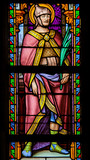 Stained Glass - Saint Florentius