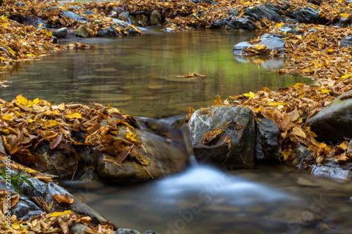Mała kaskada w Karpatach w sezonie jesiennym