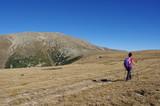 Jeune femme randonne dans la steppe au pla guillem dans le massif du canigou - 229137439