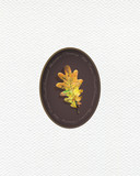 Illustration with leaf of oak painted  with colored pencils.  Autumn element for creating prints on clothes, textiles, for invitation or poster design. - 229181665