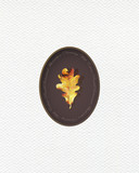 Illustration with leaf of oak painted  with colored pencils.  Autumn element for creating prints on clothes, textiles, for invitation or poster design. - 229181688