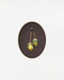 Illustration with oak acorns  painted  with colored pencils. Autumn element for creating prints on clothes, textiles, for invitation or poster design. - 229182012