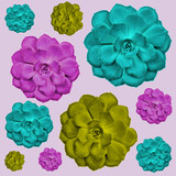 Succulents Flowers Pink, Cyan, Magenta, Yellow Colors Minimal Style Pop Art Pattern Top View Flat Lay