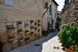 Floral streets of Spello in Umbria, Italy. - 229182218