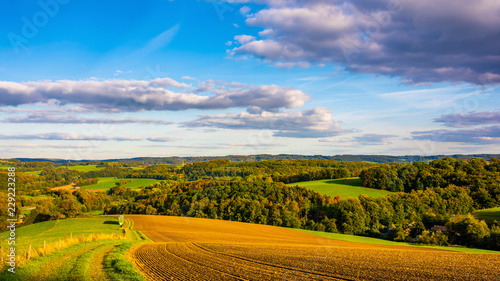 Autumn landscape in Germany with fields and forest at sunset - 229223288