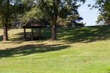 park gazebo - 229280877
