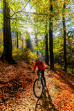 Mountain biking woman riding on bike in early spring mountains forest landscape. Woman cycling MTB enduro flow trail track. Outdoor sport activity. - 229296221