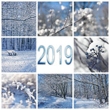 2019, snow and winter landscapes square greeting card - 229351832