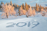 2019 written in the snow, snowy trees, winter landscape in the background - 229353291