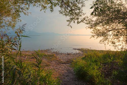 Chiemsee Ufer, Blick durch Weidenzweige auf den See.