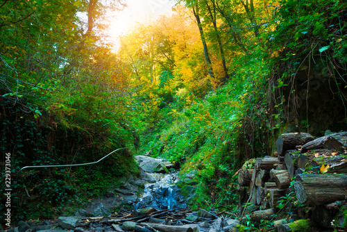 A waterfall in mountain range autumn - 229373046