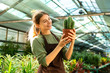 Gardener holding plant cactus standing near flowers in greenhouse