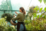 Woman gardener holding water can standing near flowers in greenhouse