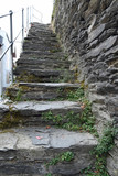 bewuchs an steintreppe zur stadtmauer in oberwesel