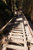Wooden stairs with a woos rail between the rocks.