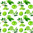 Leinwandbild Motiv Lime fruit seamless watercolor pattern. Hand draw illustration.