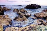 Sea Coast in Tenerife - 229485265